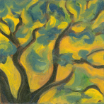 Yellow Sky (tree)